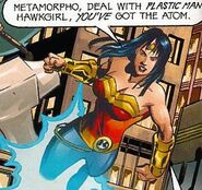 Wonder Woman Secret Society of Super-Heroes