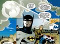 Bat-Signal 17