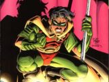 Robin Vol 2 34