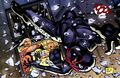 Black Spider Derrick Coe 001