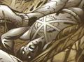 Firestorm Superboy's Legion 001