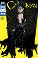 Catwoman Vol 5 12