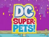 DC Super-Pets! (Shorts) Episode: Have Your Cake and B'Dg Too