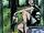 Catwoman Vol 5 1 Silver Foil Variant.jpg