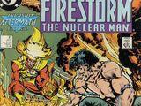 Firestorm Vol 2 81