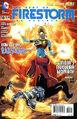 Fury of Firestorm Vol 1 10