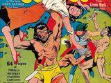 Mystery Men Comics Vol 1 4