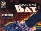 Batman: Shadow of the Bat Vol 1 34