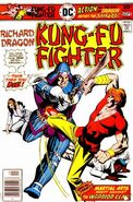 Richard Dragon Kung-Fu Fighter Vol 1 11