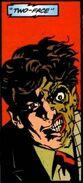 Two-Face I Joker 01