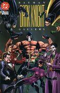 Batman Dark Knight Gallery 1