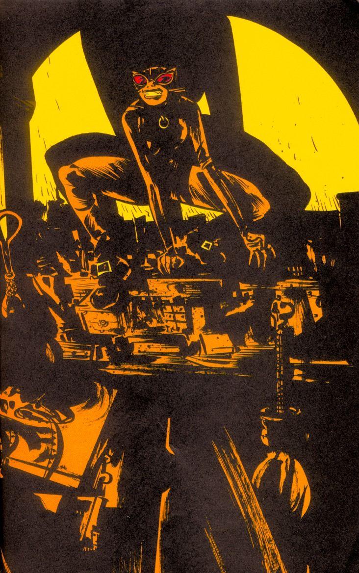 Catwoman Vol 3 8 Textless.jpg