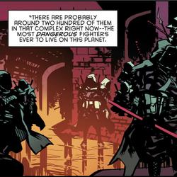 League of Shadows (Prime Earth)