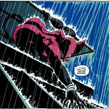 Catwoman 0128.jpg