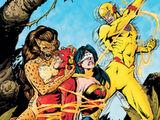 The Flash Vol 2 219