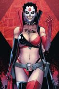 Harley Quinn and Her Gang of Harleys Vol 1 4 Textless Variant