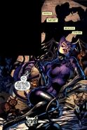 Catwoman Earth-31 004