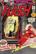 Flash v.1 208
