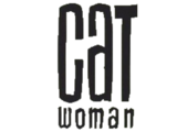 Catwoman Vol 3
