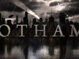 Gotham (TV Series) Episode: The Beginning...