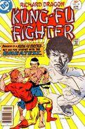 Richard Dragon Kung-Fu Fighter Vol 1 14