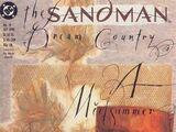 Sandman Vol 2 19