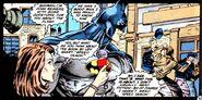 Batman Barry Allen Story 001