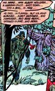 Swamp Thing Albert Hollerer 001