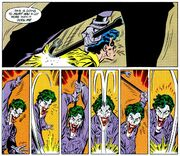 Joker 0081.jpg