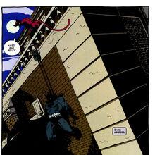 Catwoman 0133.jpg