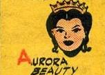 Aurora Earth-S