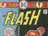 The Flash Vol 1 240