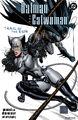 Batman Catwoman Trail of the Gun Vol 1 2