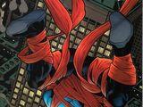 Nightwing Vol 2 48