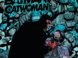 Batman/Catwoman Vol 1 7