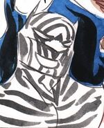 Zebra Batman Lil Gotham 001