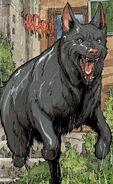 Ace the Bat-Hound DCeased 0001