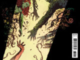 The Swamp Thing Vol 1 4