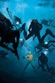 Aquaman Vol 8 13 Textless Variant