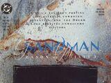 Sandman Vol 2 24