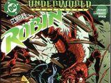 Robin Vol 2 24
