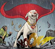 Krypto DCeased 0002