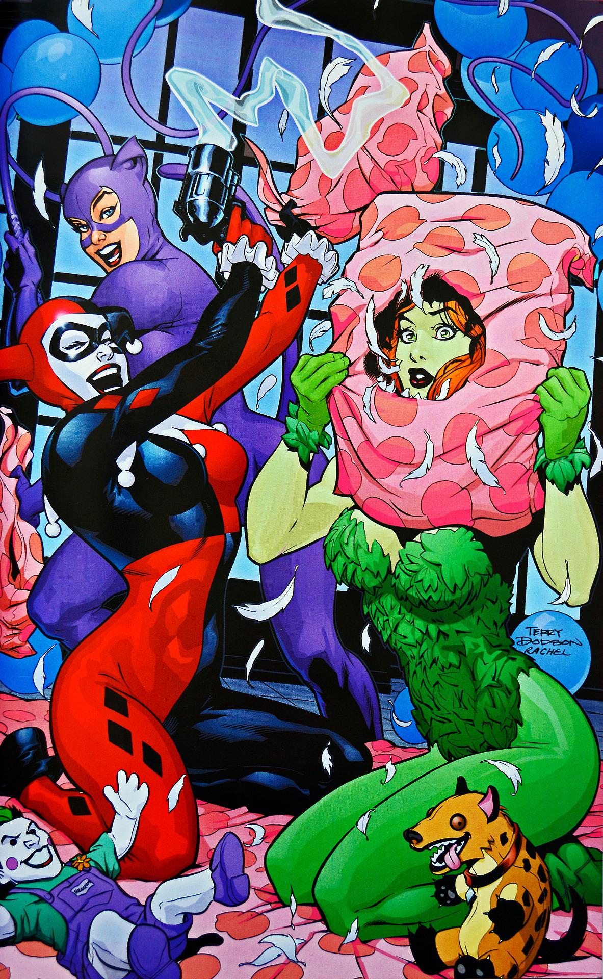 Harley Quinn Vol 1 3 Textless.jpg