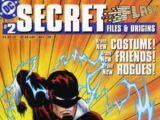 The Flash Secret Files and Origins Vol 1 2