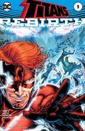 Titans Rebirth Vol 1 1