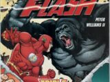 The Flash Vol 2 240