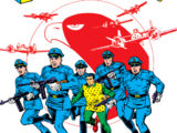 Blackhawk Squadron (Earth-One)