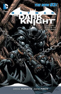 Batman The Dark Knight Cycle of Violence