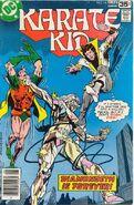 Karate Kid 14