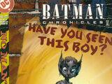 Batman Chronicles Vol 1 17